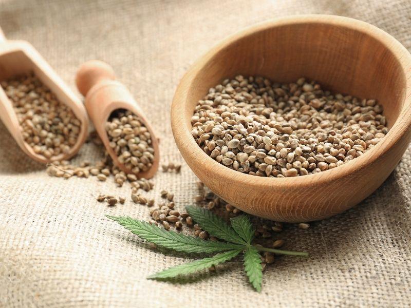 hemp seed while pregnant